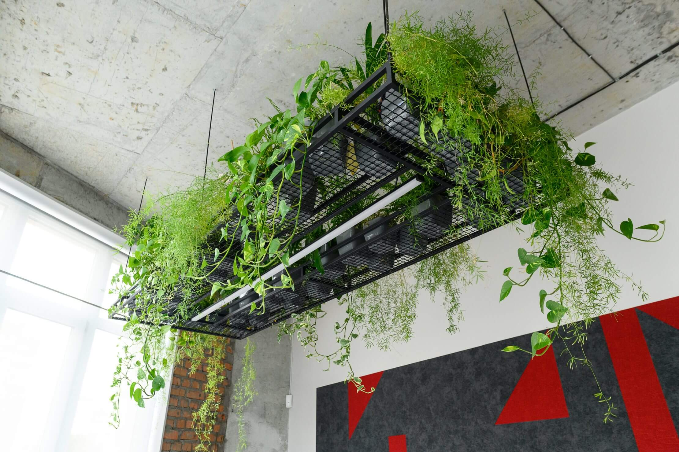 Why invest in greening your office 7