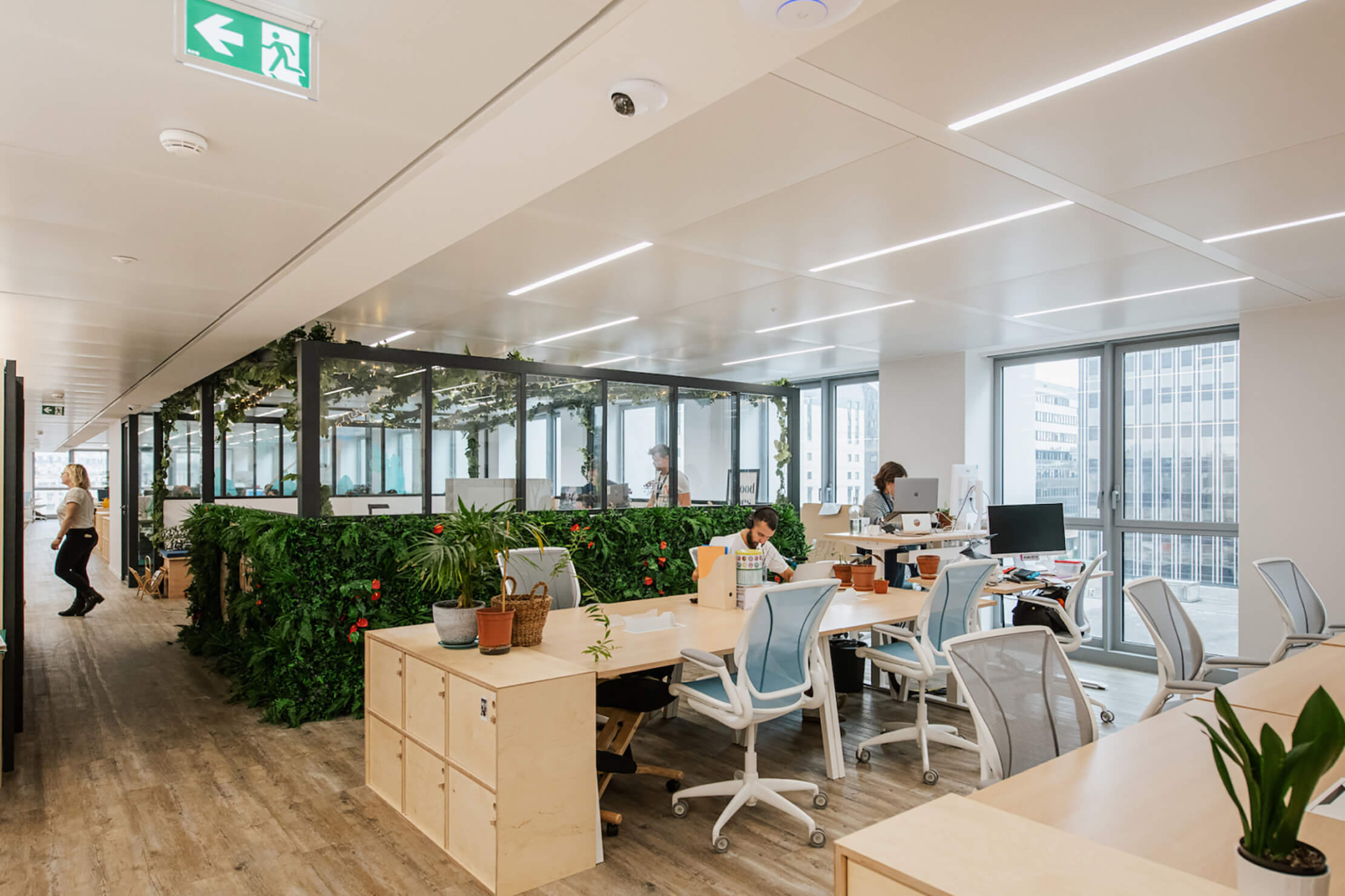 Biophilic design in office spaces 10 1