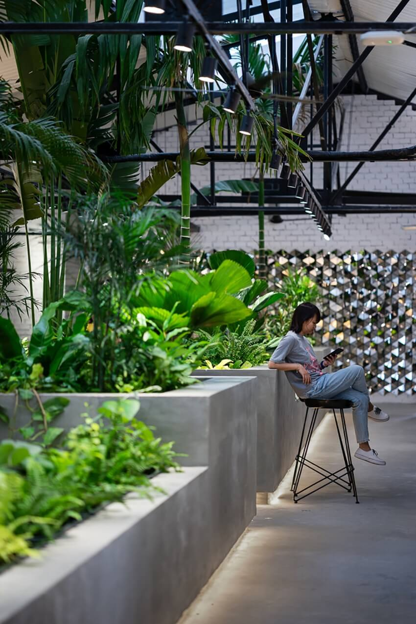 Biophilic design in office spaces 3 1