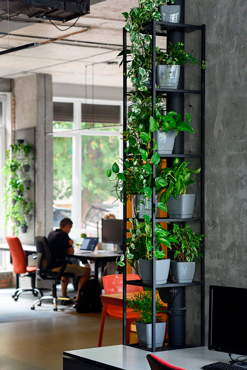 Biophilic design in office spaces 12 1