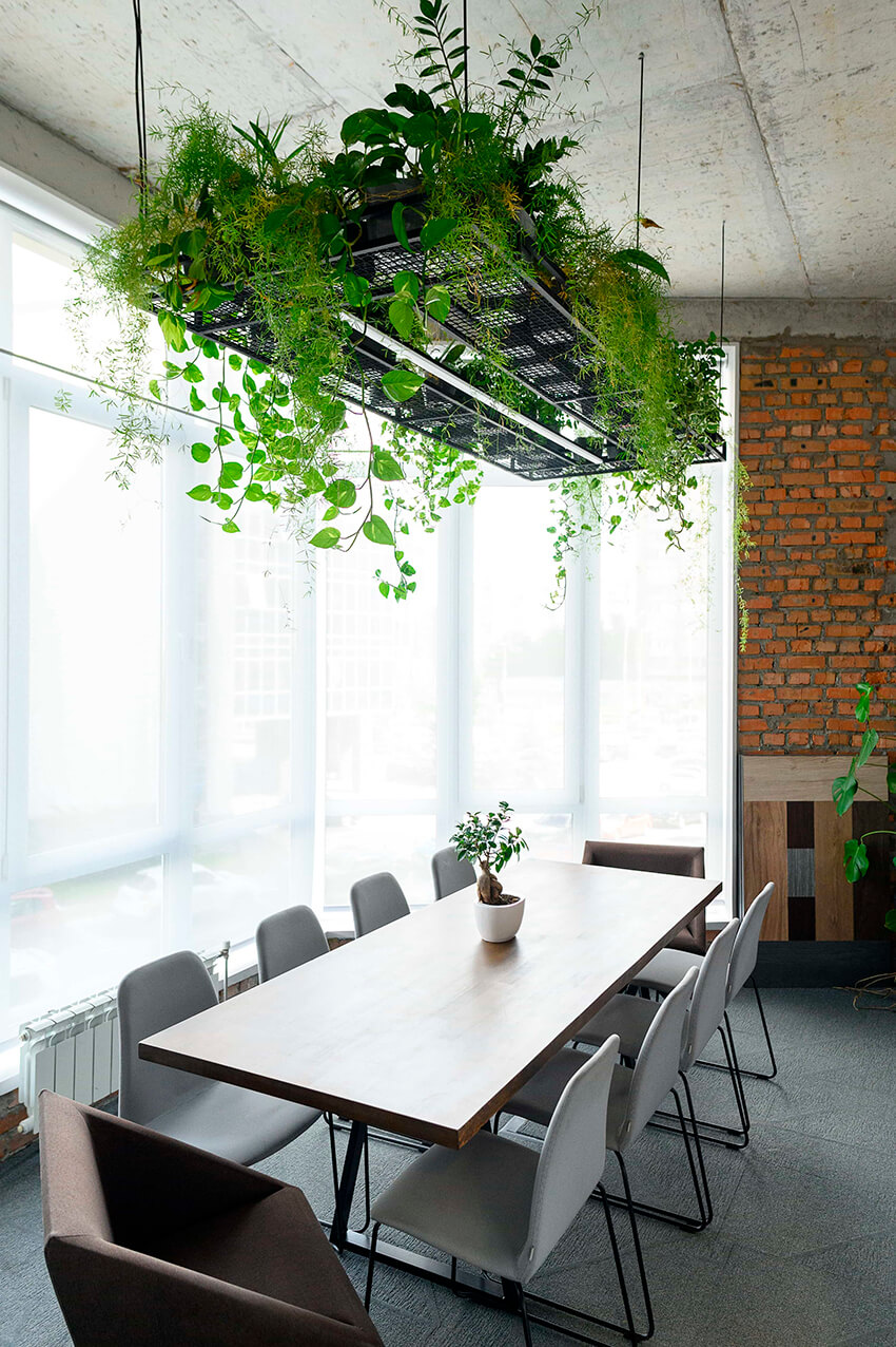 Biophilic design in office spaces 12 2